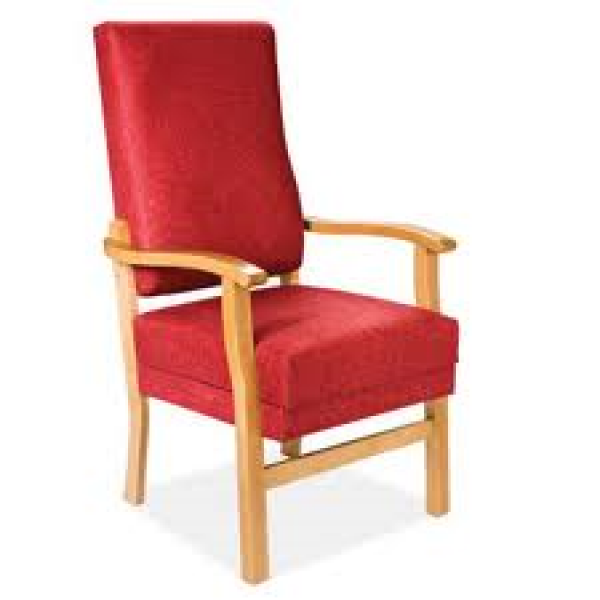 Riser Recliner Armchairs, Beds and Fireside Chairs ...